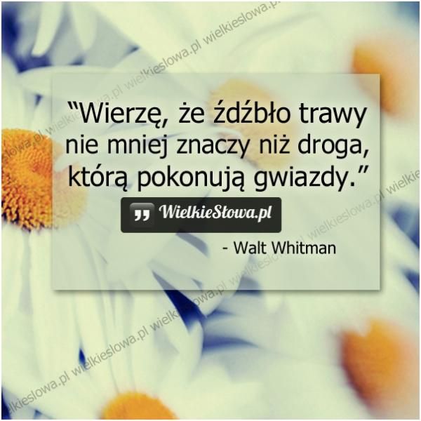 wierze_ze_zdzblo_trawy_nie_mniej