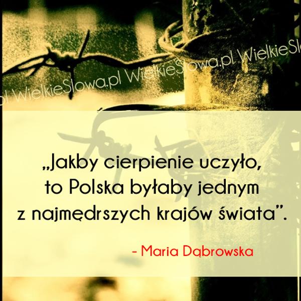 Cytaty o cierpieniu, cytaty o Polsce: Jakby cierpienie uczyło...