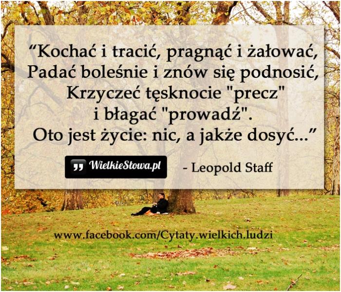 kochac-i-tracic