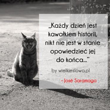 Każdy dzień jest kawałkiem historii…