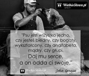 Psu jest wszystko jedno, czy jesteś biedny…