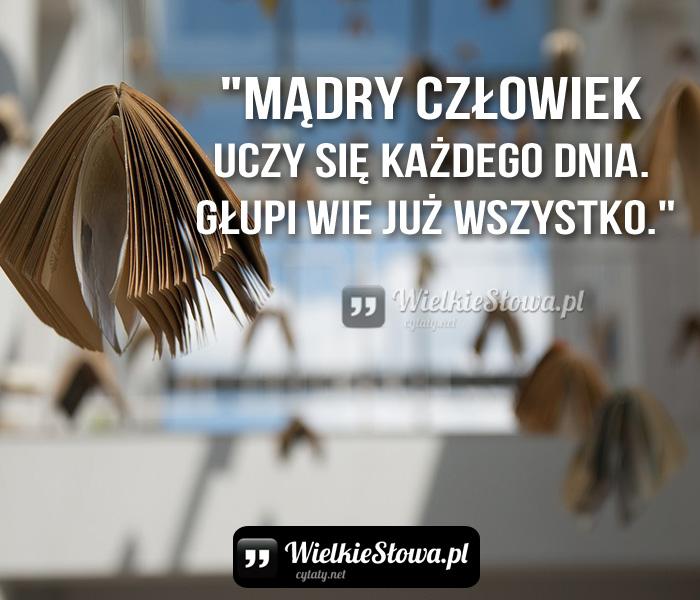 madry-czlowiek-uczy-sie-kazdego-dnia-glu