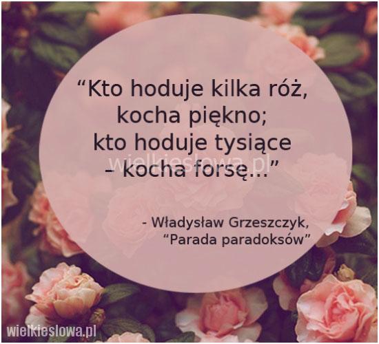 Kto hoduje kilka róż, kocha piękno...