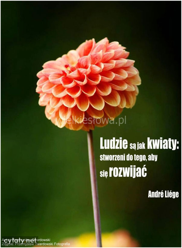Ludzie są jak kwiaty...