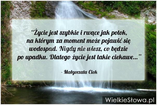 Życie jest szybkie i rwące jak potok, na którym...