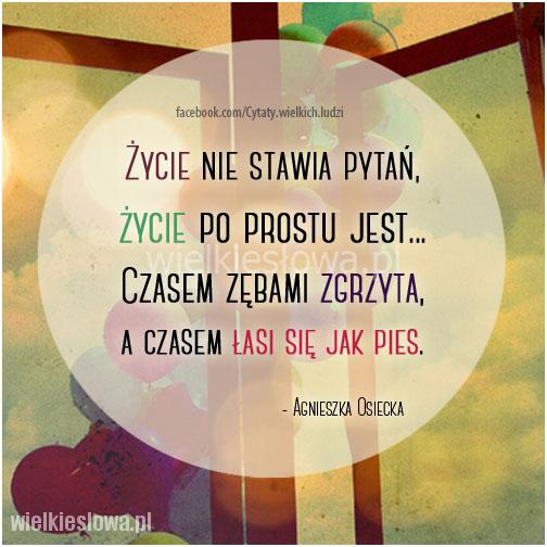 Życie nie stawia pytań, życie po prostu jest...