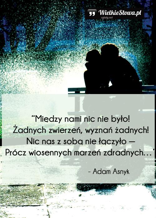 Cytaty o miłości: Między nami nic nie było...