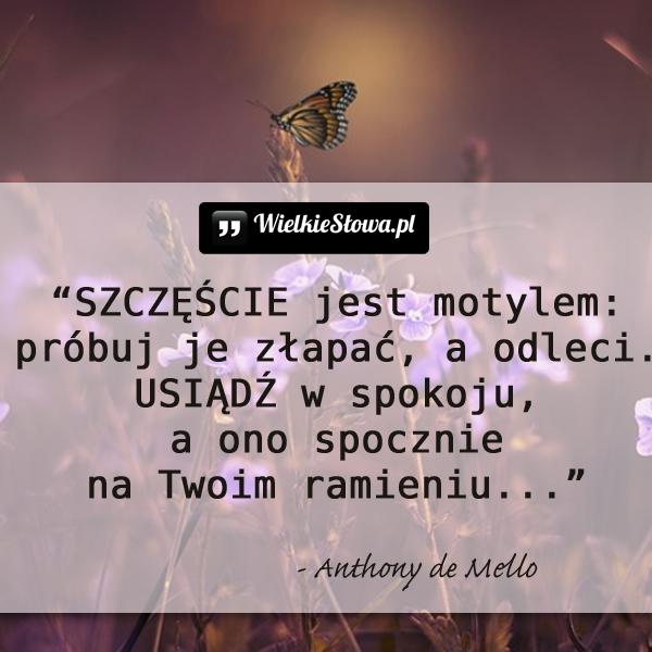 Szczęście jest motylem...
