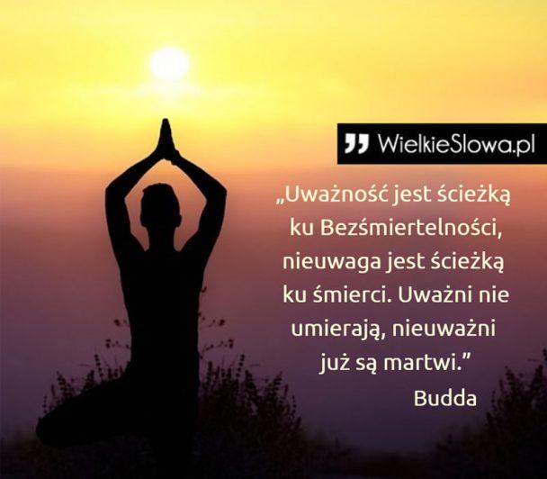 Znalezione obrazy dla zapytania Budda cytaty