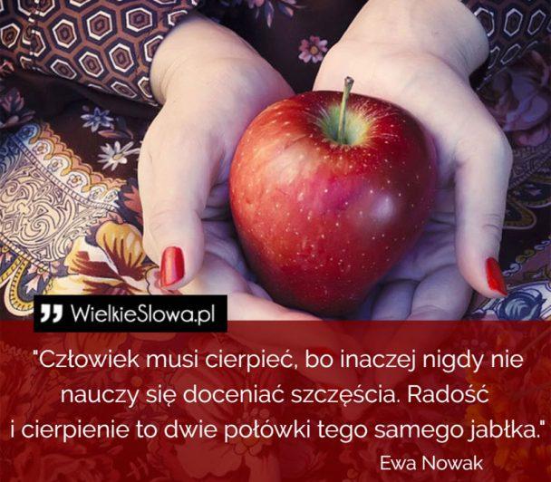 ws-119-608x532.jpg