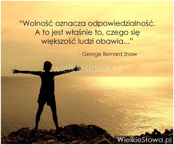 wolnosc_oznacza_odpowiedzialnosc_2013-11